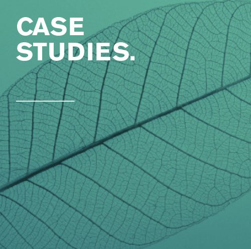 AD-Homepage-500w500h_CaseStudies_2
